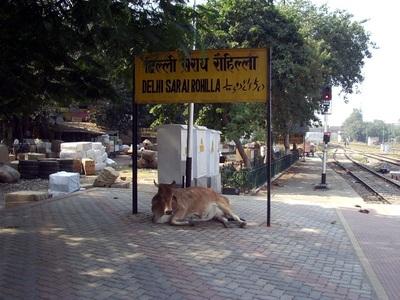Delhi_sarai_rohilla3